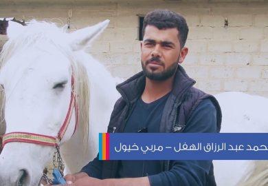 الخيل العربي في دير الزور