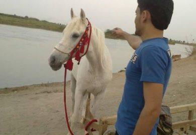 ذكرياتي على شوفي مافي – حسين من البوكمال