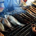 وضع قوانين حازمة لطرق صيد السمك للمحافظة على الثروة السمكية في الطبقة