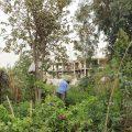 آخر أعمال دائرة الحدائق والتشجير لتحسين مظهر البلد مع مراسلنا عبد الرزاق