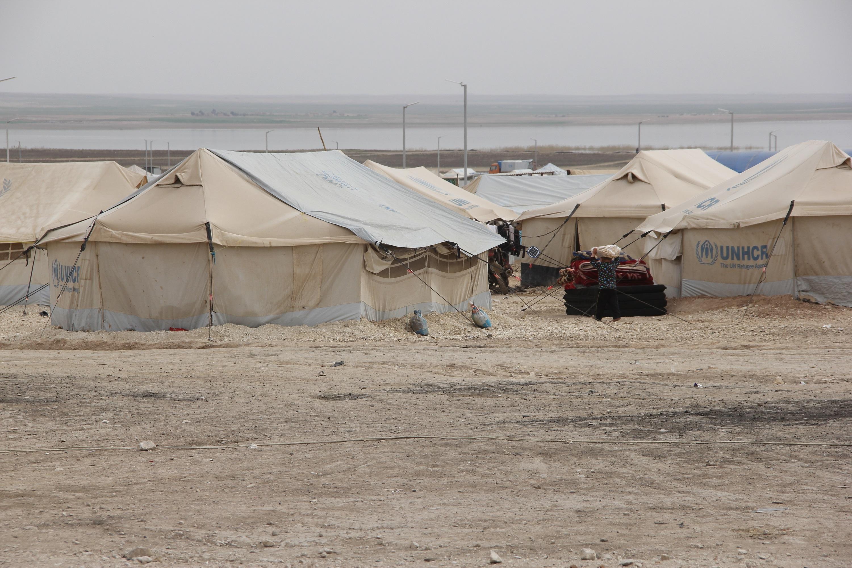 مخيم الهول .. عالم صغير مليئ بالأهوال يضم 43 جنسية