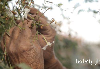 العادات والتقاليد ونشاطات لجان الصلح مع مراسلنا عبد في الرقة