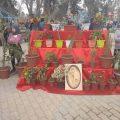 إفتتاح معرض للزهور مع مراسلنا عبد في الرقة