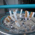 التدخين والسرطان مع الدكتور بشار فرحات