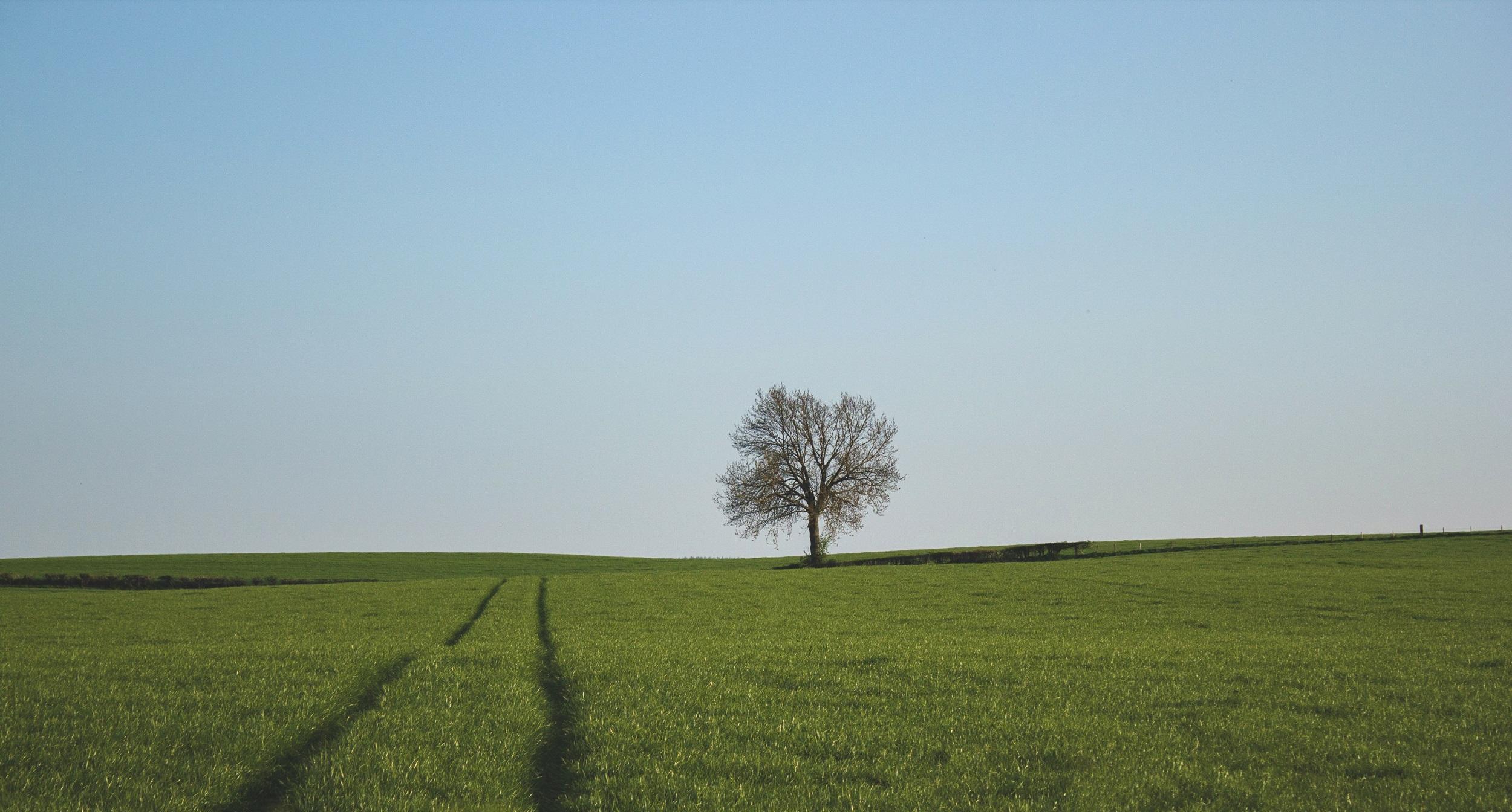 الجولة … رحلة السفاري الفراتية ولكن بلا وقود