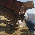 أبو اسماعيل الرقاوي صاحب اراضي زراعية يحكي عن الوضع الزراعي بالرقة وريفها
