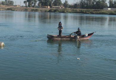 محمود جمعة الحمزاوي عضو مكتب الثروة الحيوانية في الرقة