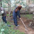 اعمال صيانة الحدائق والتشجير التابع لبلدية الشعب مع مراسلنا عبد الرزاق في الرقة