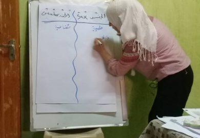 مشروع زواج القاصرات لمنظمة فيمنست مع ورد شان