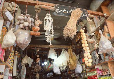 الاعشاب البرية وإستخداماتها في المنطقة مع الخبيرة الزراعية منار التركي
