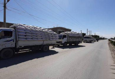 أعمال شركة تطوير المجتمع الزراعي مع أحمد العلي