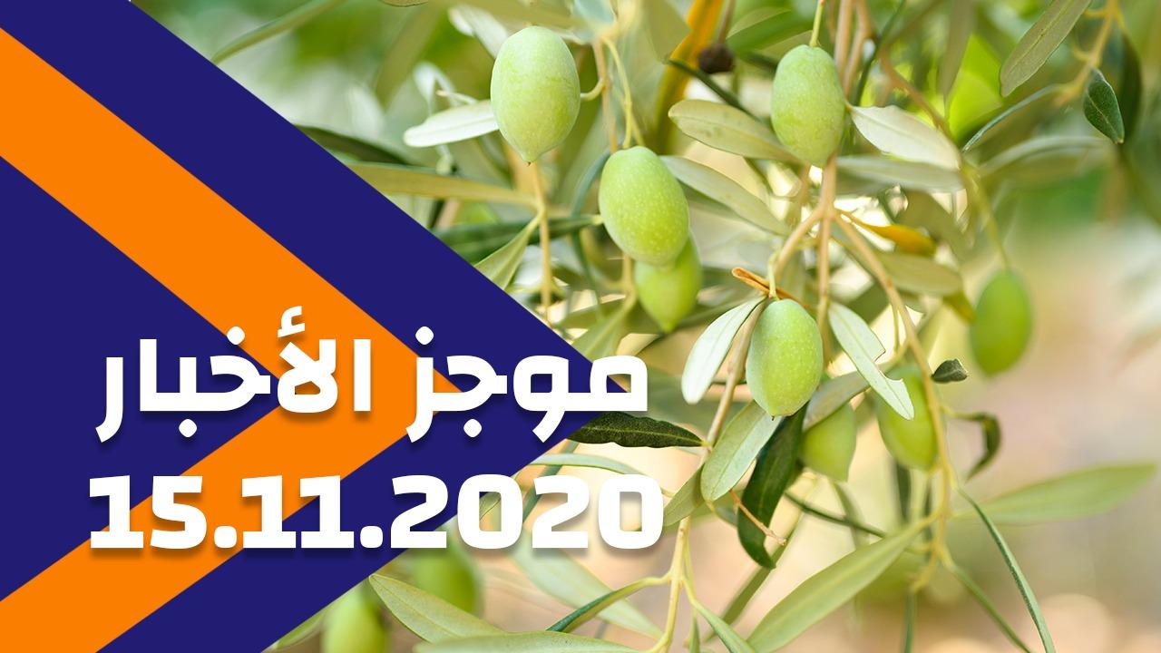 موجز الأخبار 15/11/2020