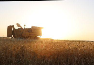 ما هو الدعم المقدم من اتحاد الفلاحين لمزارعي ريف الرقة