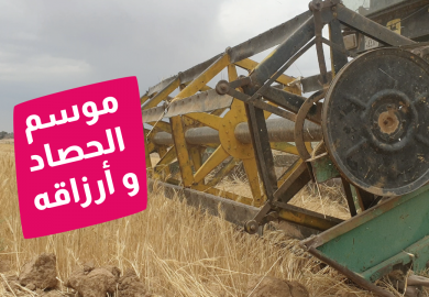 الحلقة 159 – موسم الحصاد وأرزاقه